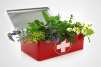 herbs in first aid kit