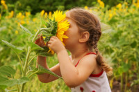 nature as treatment for adhd